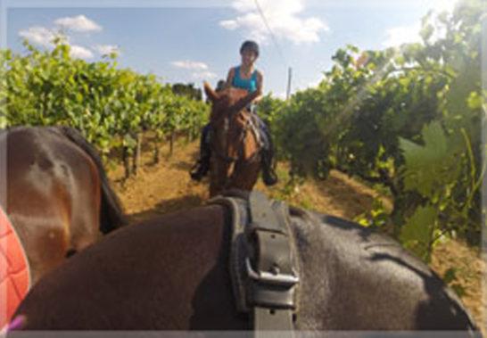 box-passeggiata-cavallo