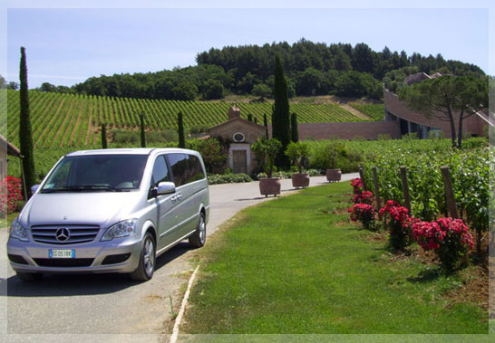 car-tour-rental